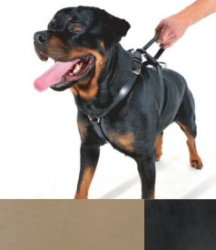 Bieler-Leather Police- Geschirr- Natur | Nowasell Animals Collection & More